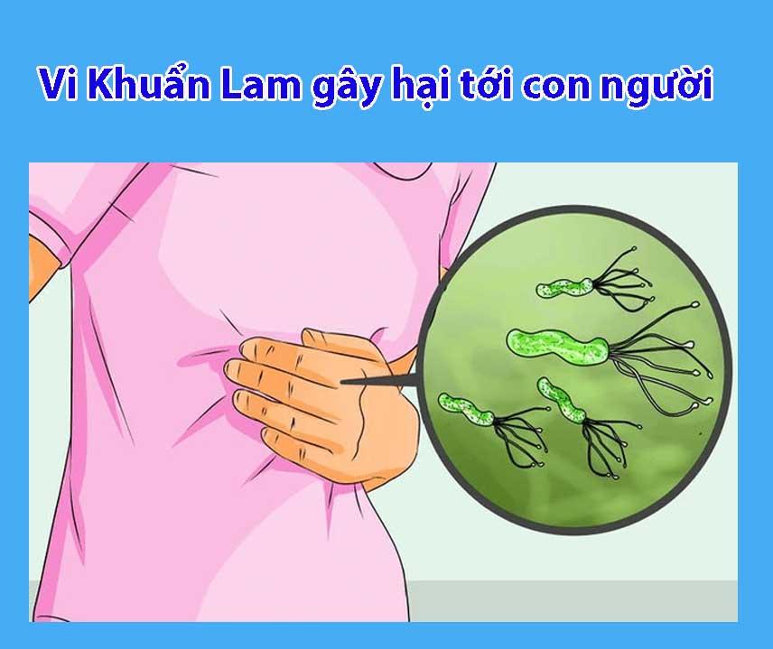 vi khuan lam co hai cho co the
